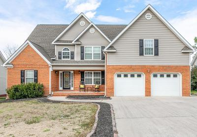 Ringgold Single Family Home For Sale: 255 Big Creek Ln