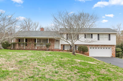 Chattanooga Single Family Home For Sale: 1713 Skyline Dr