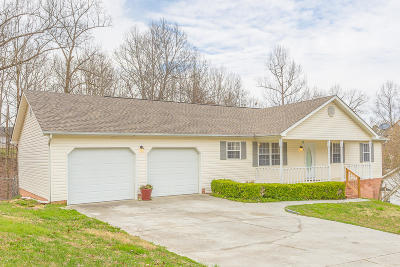 Ringgold Single Family Home For Sale: 508 Middle View Dr