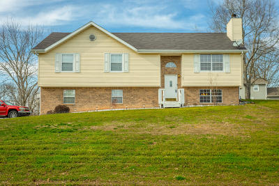 Ringgold Single Family Home For Sale: 20 Pine Dr