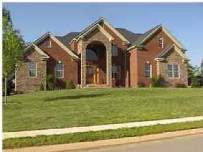 Ooltewah Single Family Home For Sale: 4072 Platinum Way