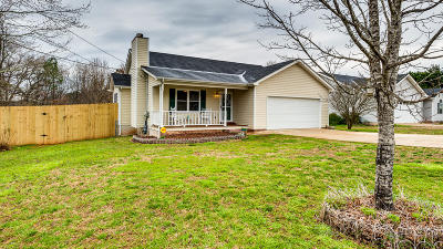 Ringgold Single Family Home For Sale: 171 Gentry Rd