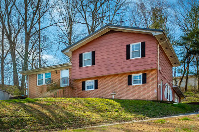 Ringgold Single Family Home For Sale: 45 Spring Cir