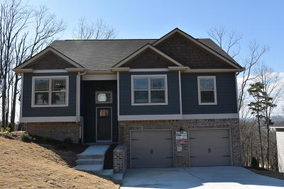 Ooltewah Single Family Home For Sale: 6491 Frankfurt Rd #1495