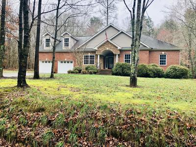 Soddy Daisy Single Family Home For Sale: 12234 Back Valley Rd