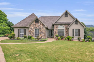 Ooltewah Single Family Home For Sale: 9465 Lazy Circles Dr