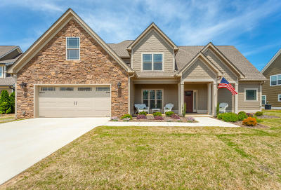 Ringgold Single Family Home For Sale: 76 Tuscany Village Dr