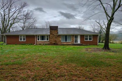 Cleveland Single Family Home For Sale: 7363 Blue Springs Rd