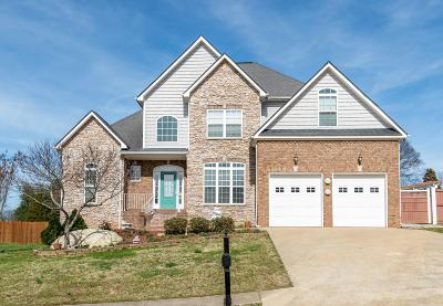 Ooltewah Single Family Home For Sale: 7973 Prince Dr
