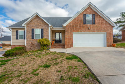 Ringgold Single Family Home For Sale: 96 McKinley Ln