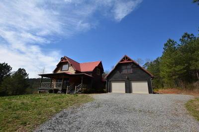 Ocoee Single Family Home For Sale: 330 Mountain View Cir #81