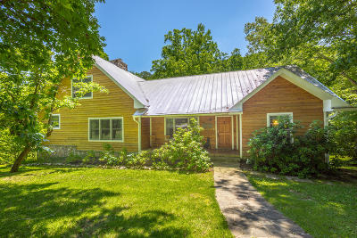 Rising Fawn Single Family Home For Sale: 291 Vulcan Dr