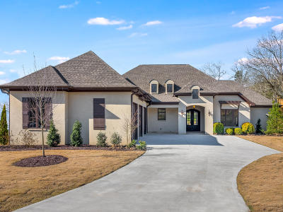 Ooltewah Single Family Home For Sale: 9210 Skyfall Dr