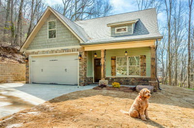 Ooltewah Single Family Home Contingent: 9670 Switchback Tr