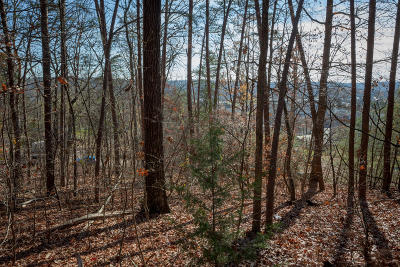 Residential Lots & Land For Sale: Hamilton Ave