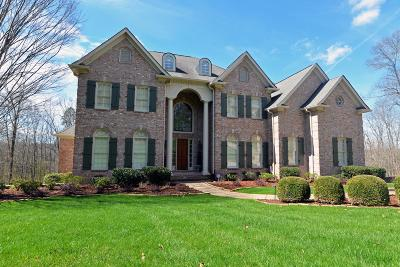 Ooltewah Single Family Home For Sale: 6845 Silver Cloud Cove