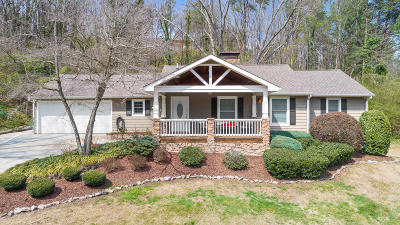 Chattanooga Single Family Home For Sale: 2771 Tanglewood Dr