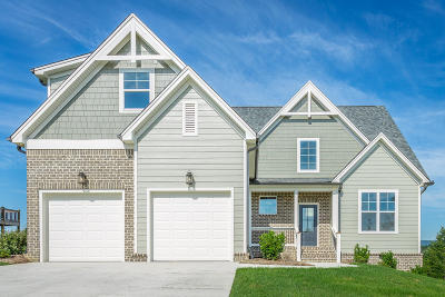 Soddy Daisy Single Family Home For Sale: 10971 High River Dr