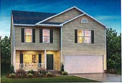 Rossville Single Family Home For Sale: 12 Calvary Ct #57
