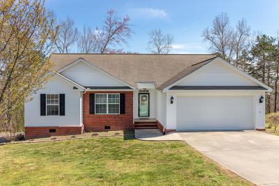 Cohutta Single Family Home For Sale: 318 Eaglebend Dr