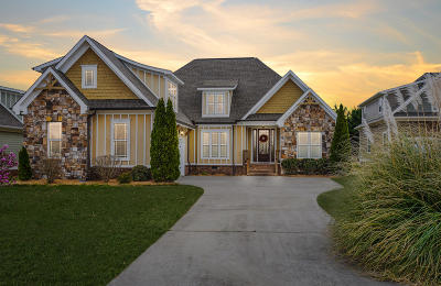 Ooltewah Single Family Home For Sale: 8101 Robertsview Dr