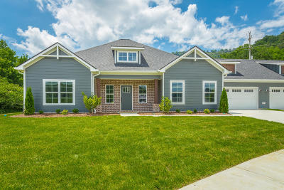 Chattanooga Single Family Home For Sale: 3412 Travertine Ln