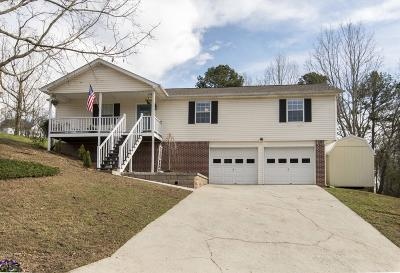 Ringgold Single Family Home For Sale: 45 W Sims Drive