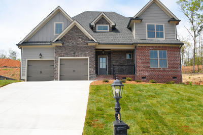 Hamilton County Single Family Home For Sale: 2384 Weeping Willow Dr