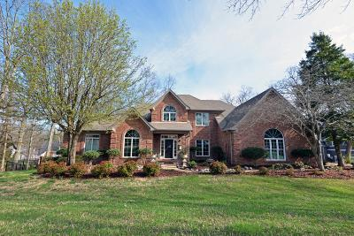 Chattanooga Single Family Home For Sale: 9401 Magical View Dr