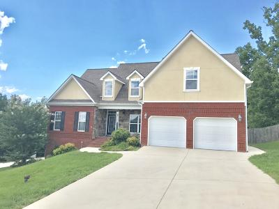 Ringgold Single Family Home For Sale: 67 Will Ridge Dr