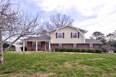 Ringgold Single Family Home For Sale: 20 Brownwood Cir