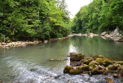 Residential Lots & Land For Sale: Above Coppinger Cove