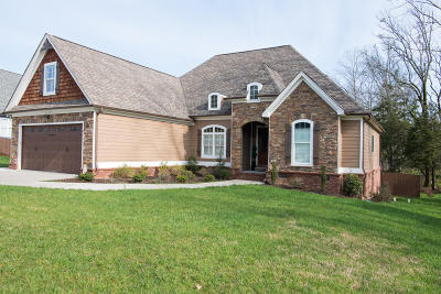 Ooltewah Single Family Home For Sale: 6598 Satjanon Dr #Lot #280