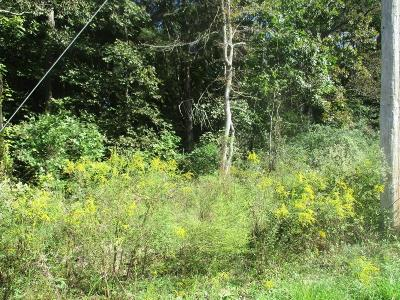 Residential Lots & Land For Sale: 164 Wilbanks Rd