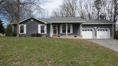 Ringgold Single Family Home For Sale: 377 Stonecrest Cir