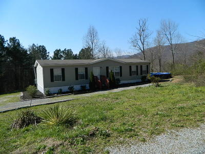 Chickamauga Single Family Home For Sale: 10585 Highway W 136