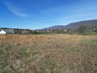 Residential Lots & Land For Sale: 24 Hudlow Rd