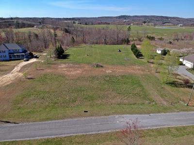 Residential Lots & Land For Sale: 357 Hunters Tr #10