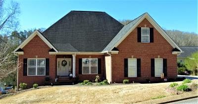 Chattanooga Single Family Home For Sale: 339 Knoll Creek Cir