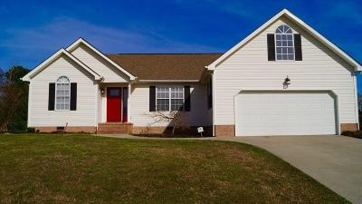 Ringgold Single Family Home For Sale: 332 Spring Wind Cir