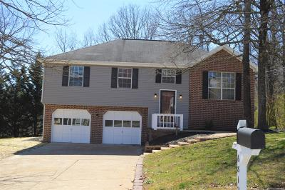 Single Family Home For Sale: 6812 Benwood Dr