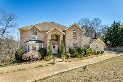 Ooltewah Single Family Home For Sale: 9506 Mountain Lake Dr