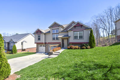 Ooltewah Single Family Home For Sale: 6326 Frankfurt Rd