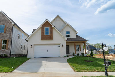 Chattanooga Single Family Home For Sale: 5021 Waterstone Dr #Lot #19