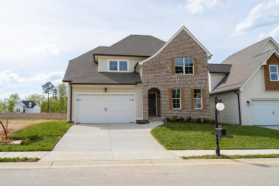 Chattanooga Single Family Home For Sale: 5017 Waterstone Dr #Lot #20
