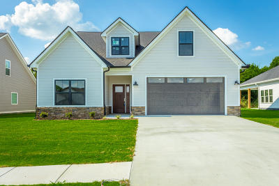 Rossville Single Family Home For Sale: 73 Browning Dr