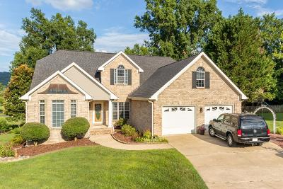 Ringgold Single Family Home For Sale: 705 Wisley Way