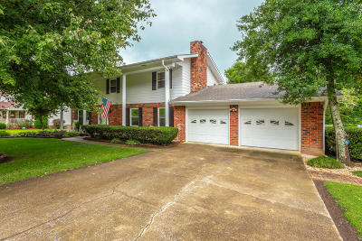 Ringgold Single Family Home Contingent: 253 Dailey Hill Cir