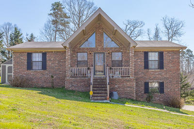 Ringgold Single Family Home For Sale: 477 Rolling Hills Dr
