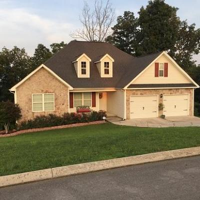Ringgold Single Family Home For Sale: 205 Promise Heights Dr
